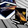 Do wystawy Troja (1)