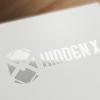 Hidden X logo (1)